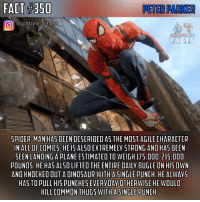 America, Batman, and Dinosaur: PETER PARKER  6CMARVELDCFACTS  OGCMARVELDCFACTS  IG GMARVELDCFACT  SPIDER MAN HAS BEEN DESCRIBED AS THE MOST AGILE CHARACTER  IN ALL OF COMICS. HE IS ALSO EXTREMELY STRONG AND HAS BEEN  SEEN LANDING A PLANE ESTIMATED TO WEIGH 175.000-215.000  POUNOS. HE HAS AL50 LIFTED THE ENTIRE DAILY BUGLE ON HISOWN  AND KNOCKED OUT A DINOSAUR WITH ASINGLE PUNCH. HE ALWAYS  HAS TO PULL HIS PUNCHES EVERYDAY OTHERWISE HE WOULD  KILL COMMON THUGS WITH A SINGLE PUNCH While Spider-Man is overrated most of the time, he can also be underrated. So I figured I would make a fact on Peter's feats just to show how awesome the best Marvel hero is.🙌🏼 - Check out my last post if you haven't already.👍🏼 - QOTD: Who is your Top 5 favorite superheroes in all of comics? Comment below!💥⬇️ - AOTD: These are in order: The Flash, Spider-Man, Batman, Superman, and Captain America.🤙🏼 - spiderman spidey webslinger friendlyneighborhood spidermanhomecoming spidermanmovie peterparker marvel marvelcomics marveluniverse marvelcinematicuniverse marvelentertainment marvelstudios mcu marveldcfacts_