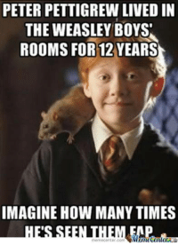 peter: PETER PETTIGREW LIVED IN  THE WEASLEY BOYS  ROOMS FOR 12 YEARS  IMAGINE HOW MANY TIMES  Mametenuer  memecenter com