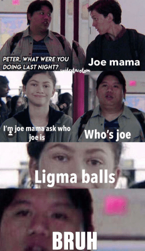 Bruh, Fat, and Epic: PETER, WHAT WERE YOU  Joe mama  DOING LAST NIGHT?Maotom  I'm joe mama ask who  joe is  Who's joe  Ligma balls  BRUH Fat guy from psiderman owned epic style xd😂😂😂🤣🤣