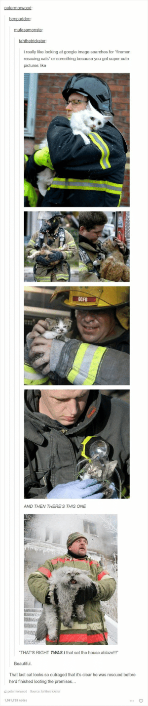 "Beautiful, Cats, and Cute: petermorwood:  benpaddon:  mufasamonsta:  tahthetrickster:  really like looking at google image searches for ""firemen  rescuing cats"" or something because you get super cute  pictures like  CCFD  AND THEN THERE'S THIS ONE  ""THAT'S RIGHT TWAS I that set the house ablaze!!!""  Beautiful  That last cat looks so outraged that it's clear he was rescued before  he'd finished looting the premises...  petermorwood Source: tahthetrickster  1,561,723 notes  GLOBE 19 Hilarious Tumblr Posts About Cats That Are Way Too Funny To Miss - I Can Has Cheezburger?"