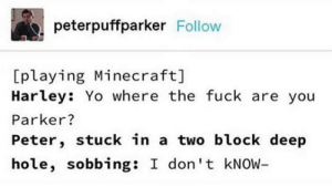 Minecraft, Yo, and Fuck: peterpuffparker Follow  [playing Minecraft]  Harley: Yo where the fuck are you  Parker?  Peter, stuck in a two block deep  hole, sobbing: I don't KNOW