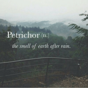 Smell, Earth, and Vain: Petrichor (n.)  the smell of earth after vain.