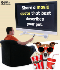 Pets Healthy Share A Movie Quote That Best Describes Your Pet