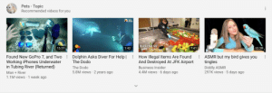 What?: Pets - Topic  Recommended videos for you  the  dodo  BUSINESS  INSIDER  15:31  1:42  7:41  12:38  ASMR but my bird gives you  tingles  Found New GoPro 7, and Two  Working iPhones Underwater  in Tubing River (Returned)  Dolphin Asks Diver For Help |  The Dodo  How Illegal Items Are Found  And Destroyed At JFK Airport  Diddly ASMR  297K views 5 days ago  The Dodo  Business Insider  5.8M views 2 years ago  4.4M views 6 days ago  Man River  .  1.1M views 1 week ago What?