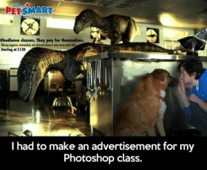 Photoshop, Tumblr, and Blog: PETSMART  Obedience classes. They pay for themselves.  Starting at $120  l had to make an advertisement for my  Photoshop class. srsfunny:Advertisement Win