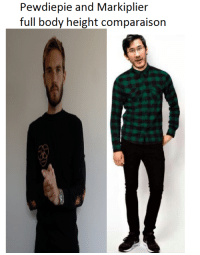 markiplier: Pewdiepie and Markiplier  full body height comparaison
