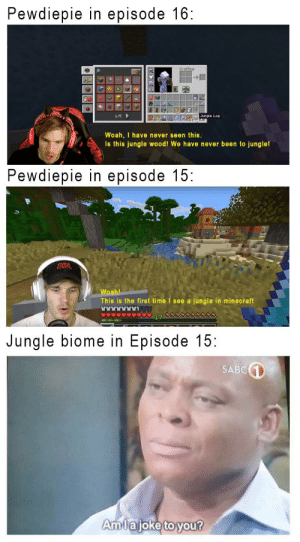 Jungles have feelings too!: Pewdiepie in episode 16  nle Lo  1/5  NED  Woah, I have never seen this.  Is this jungle wood! We have never been to jungle!  Pewdiepie in episode 15:  Woahl  This is the first time I see a jungle in minecraft  LAAAAAR  Jungle biome in Episode 15:  SABC1  Amlajoke to you? Jungles have feelings too!