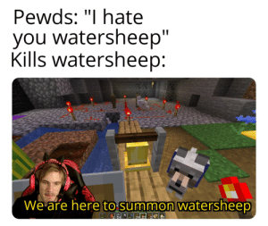 """Got, Gone, and You: Pewds: """"I hate  you watersheep""""  Kills watersheep  We are here to sum mon watersheep You don't know what you got until it's gone"""