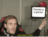 gamer: Pewds is  a gamer  and that's a fact