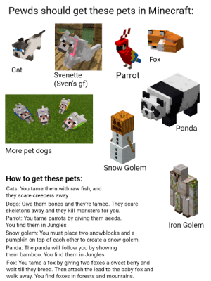Bones, Cats, and Dogs: Pewds should get these pets in Minecraft:  Fox  Cat  Parrot  Svenette  (Sven's gf)  Panda  More pet dogs  Snow Golem  How to get these pets:  Cats: You tame them with raw fish, and  they scare creepers away  Dogs: Give them bones and they're tamed. They scare  skeletons away and they kill monsters for you.  Parrot: You tame parrots by giving them seeds.  You find them in Jungles  Iron Golem  Snow golem: You must place two snowblocks and a  pumpkin on top of each other to create a snow golem.  Panda: The panda will follow you by showing  them bamboo. You find them in Jungles  Fox: You tame a fox by giving two foxes a sweet berry and  wait till they breed. Then attach the lead to the baby fox and  walk away. You find foxes in forests and mountains. Pewds should get these pets in Minecraft