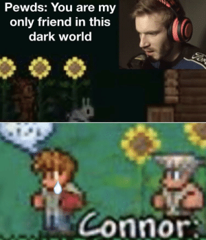 Poor Connor: Pewds: You are my  only friend in this  dark world  For  Connor Poor Connor