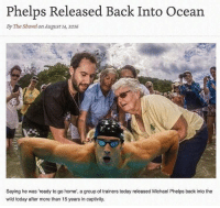 "Home, Michael, and Michael Phelps: Phelps Released Back Into Ocean  By The Shovel on August 14, 2016  Saying he was ""ready to go home, a group of trainers today released Michael Phelps back into the  wild today after more than 15 years in captivity. @m_phelps00 legend 🙏🏻"