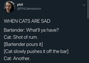 Feeling better meow: phil  @PhilJamesson  WHEN CATS ARE SAD  Bartender: Whatll ya have?  Cat: Shot of rum  Bartender pours it]  [Cat slowly pushes it off the bar]  Cat: Another. Feeling better meow