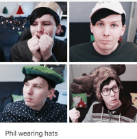 Look at this cutie {credit: @phancakeslester } . . . amazingphil lessamazingphil phillester: Phil wearing hats Look at this cutie {credit: @phancakeslester } . . . amazingphil lessamazingphil phillester