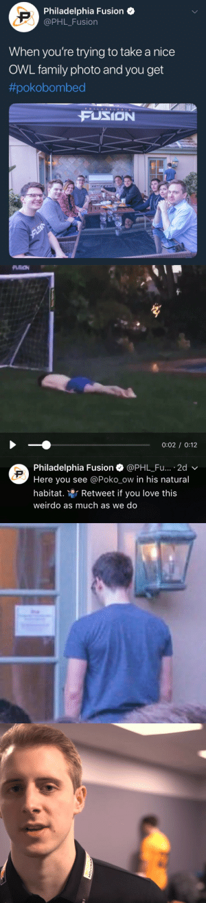 baebyeolbe:a saga: Philadelphia Fusion  @PHL_Fusion  When you're trying to take a nice  OWL family photo and you get  #pokobombed  P HILADELPHIA  FUSION   0:02 0:12  Philadelphia Fusion Ф @PHL.Fu.. . 2d  Here you see @Poko_ow in his natural  habitat. Retweet if you love this  weirdo as much as we do baebyeolbe:a saga