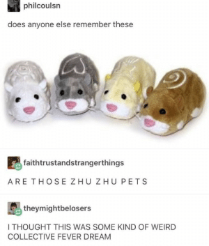: philcoulsn  does anyone else remember these  faithtrustandstrangerthings  ARE THOSE ZHU ZHU PETS  theymightbelosers  I THOUGHT THIS WAS SOME KIND OF WEIRD  COLLECTIVE FEVER DREAM