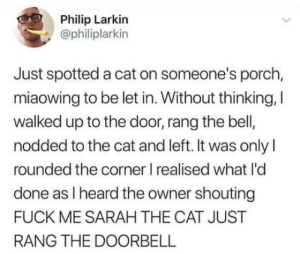 omg-humor:*Ding Dong*: Philip Larkin  @philiplarkin  Just spotted a cat on someone's porch,  miaowing to be let in. Without thinking, I  walked up to the door,rang the bell  nodded to the cat and left. It was only I  rounded the corner I realised what I'd  done as I heard the owner shouting  FUCK ME SARAH THE CAT JUST  RANG THE DOORBELL omg-humor:*Ding Dong*