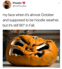 i just want to drink my PSL without breaking a sweat!: Phoebs  @YoPhoebs  my face when it's almost October  and supposed to be hoodie weather,  but it's still 90% in Fall i just want to drink my PSL without breaking a sweat!