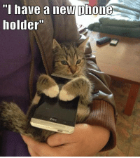 A phone Holder! :D 