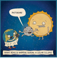 Best. photobomb. ever. 🌎🌚🌞: PHOTOBOMB!  0,  WHAT REALLY HAPPENS DURING A SOLAR ECLIPSE  UNEARTHPDCOMICS.COM 2  6  SARA. ZIMMERMAN Best. photobomb. ever. 🌎🌚🌞