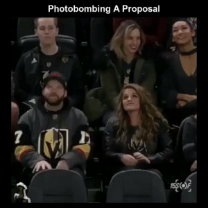 Funny, Memes, and Videos: Photobombing A Proposal  1  15SOF RT @StumblerFunny: For more funny videos follow @StumblerFunny or visit https://t.co/wXxwph26cH https://t.co/SdhzdcZefY