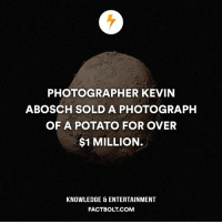 An irish potato with a black back drop for 1 mil‽ — Kevin Abosch is best known for taking photos of celebrities. factbolt — http:-www.cbsnews.com-pictures-super-expensive-potato-portraits-by-kevin-abosch-: PHOTOGRAPHER KEVIN  BOSCH SOLD A PHOTOGRAPH  OF A POTATO FOR OVER  $1 MILLION.  KNOWLEDGE ENTERTAINMENT  FACT BOLT COM An irish potato with a black back drop for 1 mil‽ — Kevin Abosch is best known for taking photos of celebrities. factbolt — http:-www.cbsnews.com-pictures-super-expensive-potato-portraits-by-kevin-abosch-
