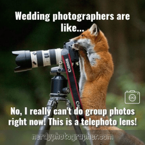 Photography Memes: Photography Memes