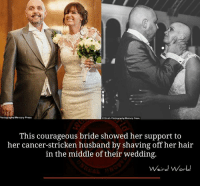 stricken: Photography Mercury Press  ostruth Photography Mercury Press  This courageous bride showed her support to  her cancer-stricken husband by shaving off her hair  in the middle of their wedding.  Weird World