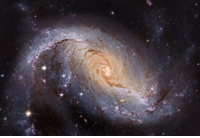 Tumblr, Blog, and Space: photos-of-space:  NGC 1672: Barred Spiral Galaxy from Hubble - [3600x2457]