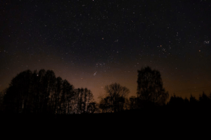 Tumblr, Blog, and Space: photos-of-space:  Night Sky and Lightpollution, Orion constellation in the centre [OC]