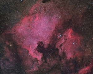 photos-of-space:  North America and Pelican Nebulae: photos-of-space:  North America and Pelican Nebulae