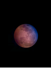 photos-of-space:  Picture my grandmother took of the blood moon through a neighbors telescope - love the colors: photos-of-space:  Picture my grandmother took of the blood moon through a neighbors telescope - love the colors