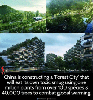 smog: Photos Stefano Boeri Architetti  China is constructing a Forest City' that  will eat its own toxic smog using one  million plants from over 100 species &  40,000 trees to combat global warming