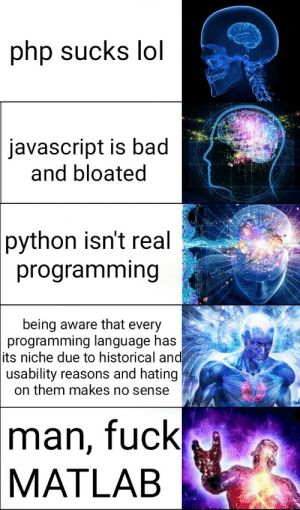 Have you ascended yet?: php sucks lol  javascript is bad  and bloated  python isn't real  programming  being aware that every  programming language has  its niche due to historical and  usability reasons and hating  on them makes no sense  man, fuck  MATLAB Have you ascended yet?