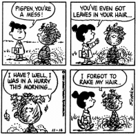 Memes, Hair, and 🤖: PI6PEN, YOURE  A MESS!  YOUVE EVEN 60T  LEAVES IN YOUR HAIR  I HAVE? WELL,I  WAS IN A HURRY  THIS MORNING,  I FORGOT TO  RAKE MY HAIR  ii-16 This strip was published on November 16, 1984. 🍂