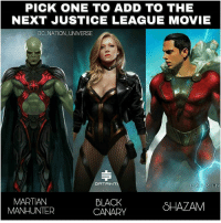 Batman, Memes, and Shazam: PICK ONE TO ADD TO THE  NEXT JUSTICE LEAGUE MOVIE  DC NATION UNIVERSE  DAT RIN  MARTIAN  MANHUNTER  BLACK  CANARY  SHAZAM Pick one ! Art by @datrinti dc dccomics dceu dcu dcrebirth dcnation dcextendeduniverse batman superman manofsteel thedarkknight wonderwoman justiceleague cyborg aquaman martianmanhunter greenlantern theflash greenarrow suicidesquad thejoker harleyquinn