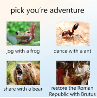 From Welcome to my meme page: pick you're adventure  jog with a frog  dance with a ant  restore the Roman  Republic with Brutus  share with a bear From Welcome to my meme page
