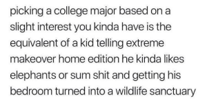 sanctuary: picking a college major based on a  slight interest you kinda have is the  equivalent of a kid telling extreme  makeover home edition he kinda likes  elephants or sum shit and getting his  bedroom turned into a wildlife sanctuary