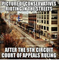 Memes, 🤖, and Picture: PICTURE OF CONSERVATIVES  RIOTINCINTHESTREETS  AFTER THE 9TH CIRCUIT  COURT OF APPEALS RULING