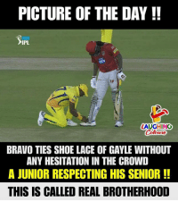 Bravo, Indianpeoplefacebook, and Ipl: PICTURE OF THE DAY !!  IPL  LAUGHING  BRAVO TIES SHOE LACE OF GAYLE WITHOUT  ANY HESITATION IN THE CROWD  A JUNIOR RESPECTING HIS SENIOR!!  THIS IS CALLED REAL BROTHERHOOD #DJBravo #ChrisGayle #Sportsmanship #KXIPVSCSK