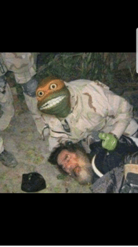 Picture taken after the ninja turtles killed Osama Bin Laden(2011) colorized: Picture taken after the ninja turtles killed Osama Bin Laden(2011) colorized