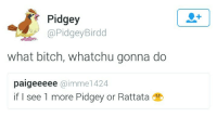 Bitch, What, and More: Pidgey  @PidgeyBirdd  what bitch, whatchu gonna do  paigeeeee @imme1424  if I see 1 more Pidgey or Rattata