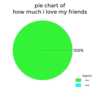 pie chart: pie chart of  how much i love my friends  100%  legend  lots  nots
