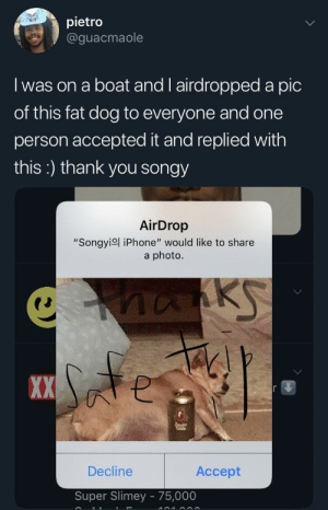 "Iphone, Thank You, and Fat: pietro  @guacmaole  I was on a boat and l airdropped a pic  of this fat dog to everyone and one  person accepted it and replied with  this:) thank you songy  AirDrop  ""Songyiol iPhone"" would like to share  a photo.  nanks  XX  Decline  Accept  Super Slimey 75,000 thanks songy :)"