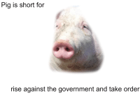 pig: Pig is short for  rise against the government and take order
