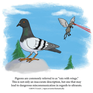 "A Fantastically False Fact About Pigeons [OC]: Pigeons are commonly referred to as ""rats with wings.""  This is not only an inaccurate description, but one that may  lead to dangerous miscommunication in regards to ultrarats.  2019 Z Gosck 