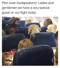 Dank, 🤖, and Specials: Pilot (over loudspeakers): Ladies and  gentlemen we have a very special  guest on our flight today