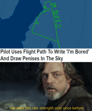 Bored, Flight, and Once: Pilot Uses Flight Path To Write 'I'm Bored'  And Draw Penises In The Sky  I've seen this raw strength only once before  IM BORED I am Bored