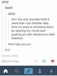 How High, Girl Memes, and Vibrator: pimp  less hi  cknd  Am l the only one that finds it  weird that I can transfer data  from my brain to someone else's  by opening my mouth and  pushing air with vibrations in their  direction  How high are you  5'4''  Source: cknd  290,213 notes https://t.co/UsseuJR7t6