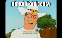 Memes, Resume, and Pimpin: pimpin aint easy  am the mack dadd  Heimlich County Needless to say that position did not go on my resume.